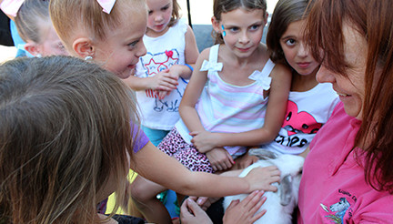 Children petting a bunny