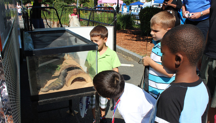 Children viewing Winston the Lizard