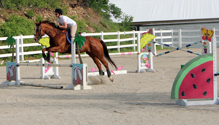 Girl jumping her horse in our outdoor arena