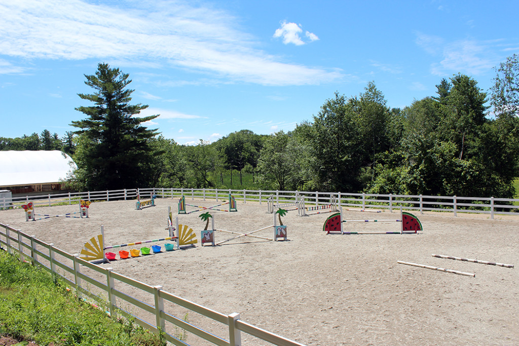 Picture of our outdoor arena with jumps set up